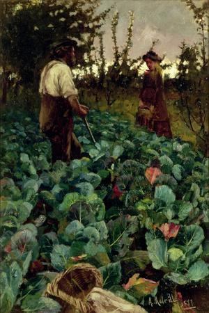 Cabbage Garden, 1877