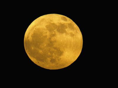 Full Moon by Arthur Morris