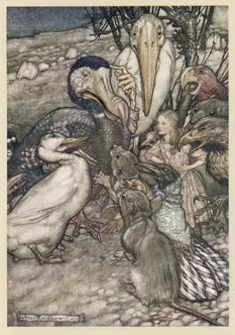 Alice and the Dodo by Arthur Rackham