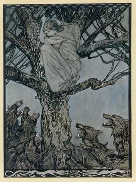 Becfola Climbs a Tree to Escape a Pack of Wolves by Arthur Rackham