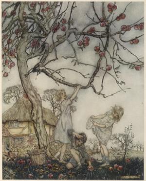 Children Pick Apples by Arthur Rackham