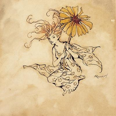 Daisy Fairy, Illustration from 'Peter Pan in Kensington Gardens', by J.M. Barrie, Published 1912