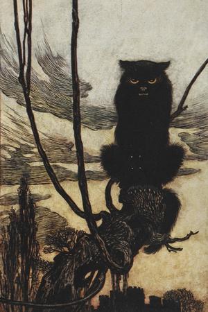 Illustration From Jorinda and Joringel Of a Black Cat
