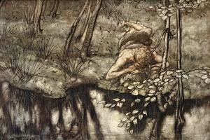 Siegfried sees himself in the stream', 1924 by Arthur Rackham