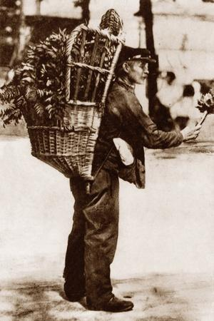https://imgc.allpostersimages.com/img/posters/artichoke-seller-paris-1900_u-L-PW2OON0.jpg?p=0