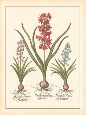 Detailed Floral I by Artique Studio