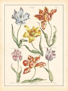 Detailed Floral IV by Artique Studio