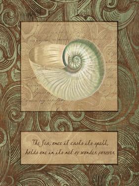 Net of Wonder by Artique Studio