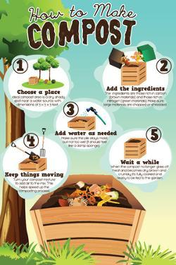 A Vector Illustration of How to Make Compost Infographic by Artisticco LLC
