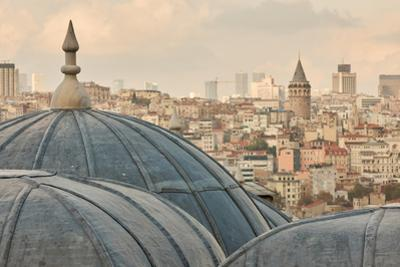 View of Dome of the Mosque, Istanbul, Turkey by artjazz