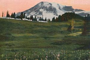 'Camp of the Clouds, Mount Rainier', c1916 by Asahel Curtis