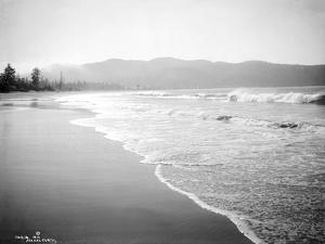 Coastline Scene, Washington, Circa 1910 by Asahel Curtis