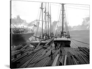 Loading Timber at Tacoma Mill, 1909 by Asahel Curtis