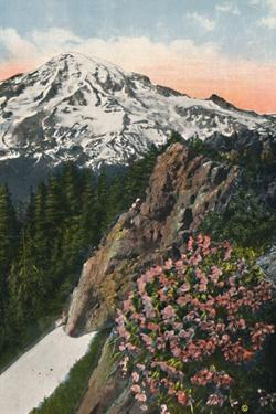 'The Primrose on Mount Rainier', c1916 by Asahel Curtis