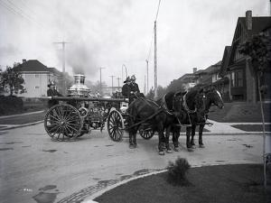 Seattle Fire Department Horse-Drawn Steam Pumper, 1907 by Ashael Curtis
