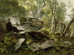 Study from Nature: Rocks and Trees, C.1856 by Asher Brown Durand