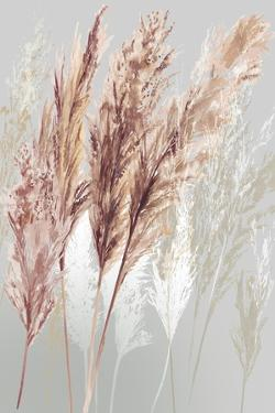 Blushing Pomp Grass I by Asia Jensen