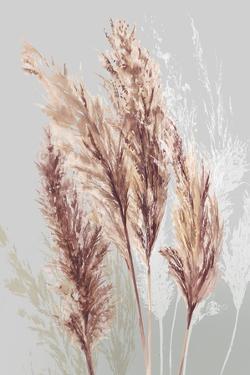 Blushing Pomp Grass II by Asia Jensen