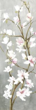 Budding Magnolia I by Asia Jensen