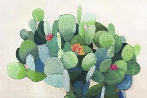 Cactus Bloom by Asia Jensen