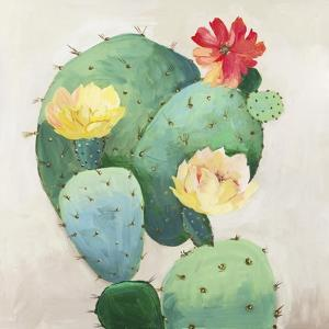Colorful Catus by Asia Jensen