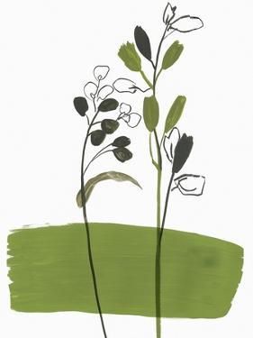 Little Herb I by Asia Jensen