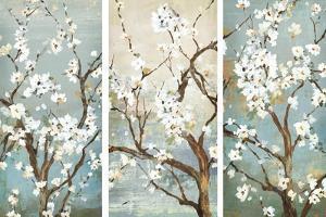 Triptych in Bloom by Asia Jensen