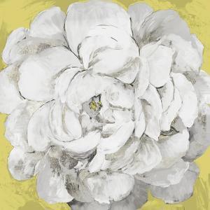 White Peonia Yellow Version by Asia Jensen