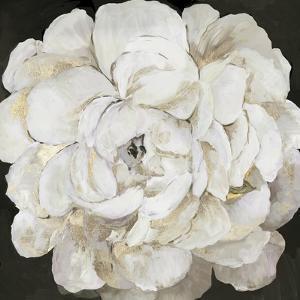 White Peonia by Asia Jensen