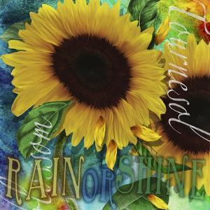 Sunflowers Rain or Shine by Asmaa' Murad