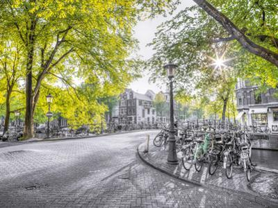 Amsterdam by Assaf Frank