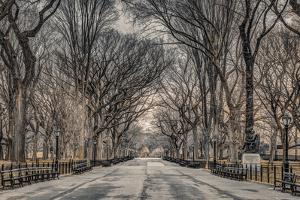 Assaf Frank- Central Park by Assaf Frank