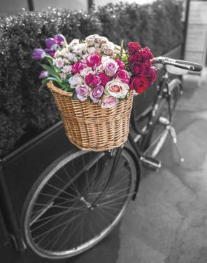Basket of Flowers I by Assaf Frank