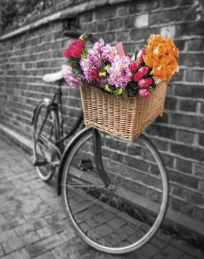 Basket of Flowers II by Assaf Frank