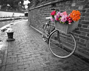 Bicycle of Love I by Assaf Frank