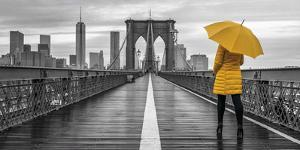Brooklyn Spotlight by Assaf Frank