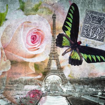 Butterfly I by Assaf Frank