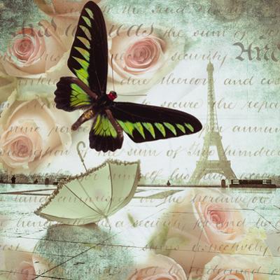 Butterfly II by Assaf Frank