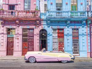 Day Trip in Candy Floss by Assaf Frank