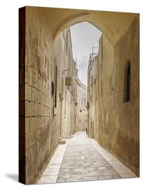 Endless Avenue by Assaf Frank