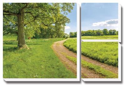 Greenest Pastures by Assaf Frank