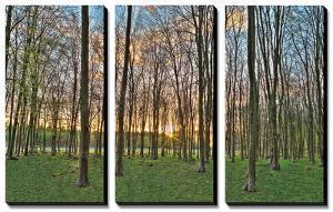 Secret Sunset by Assaf Frank