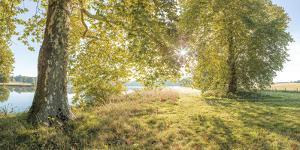 Serene Scene by Assaf Frank