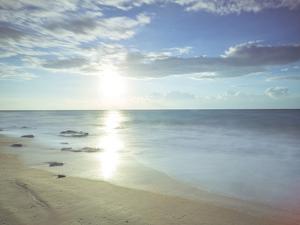 Sunshine Shores by Assaf Frank