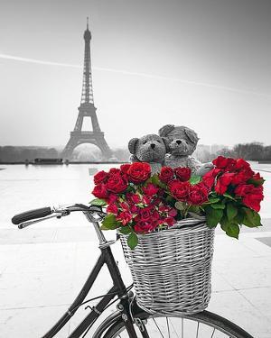 Teddy Rendez-vous by Assaf Frank
