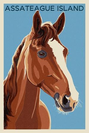 https://imgc.allpostersimages.com/img/posters/assateague-island-horse-letterpress_u-L-Q1GQN5L0.jpg?p=0