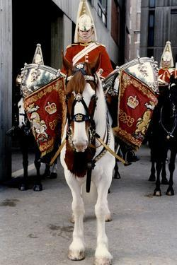 Royal Household Cavalry Blues & Royals Drum horse by Associated Newspapers