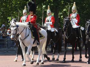 The Household Cavalry at Trooping the Colour parade by Associated Newspapers