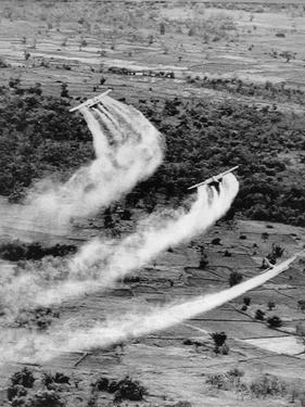 Vietnam War Agent Orange by Associated Press