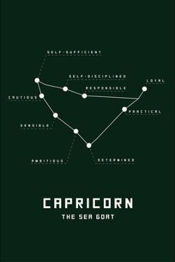 Astrology Chart Capricorn